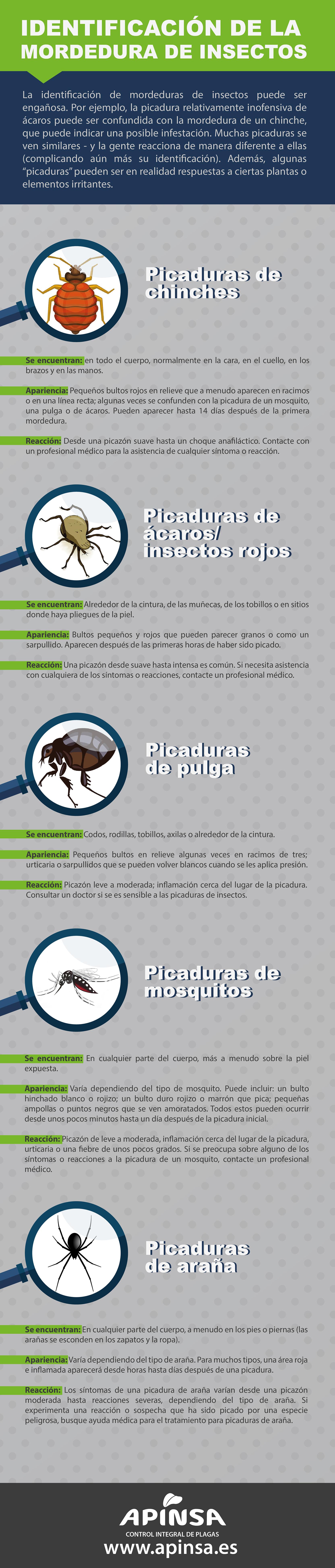 identificación de plagas