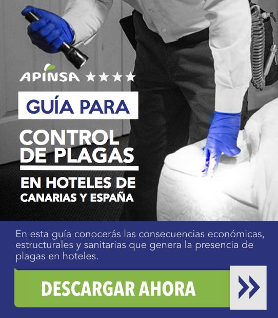 Control de plagas de xilófagos en hoteles